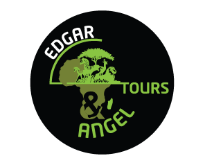 Edgar & Angel Tours & Safaris