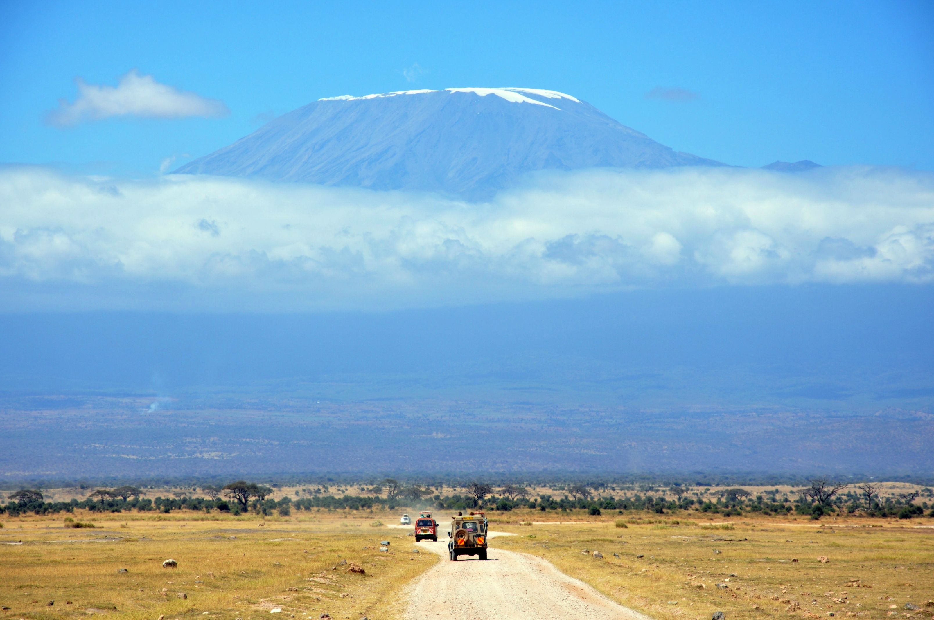 Kilimanjaro Oil
