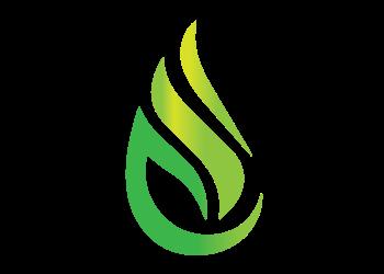 Delina Oil & Gas Distributors Ltd